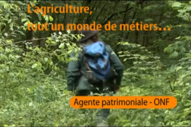 Agente patrimoniale - Office National des Fôrets thumbnail