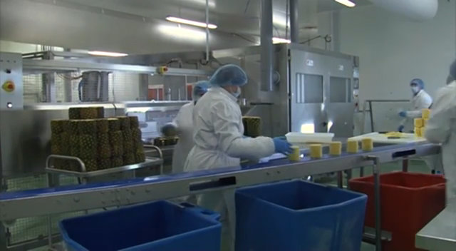 Video : Responsable production en agroalimentaire